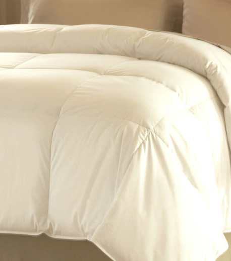 Dream Form Comforter